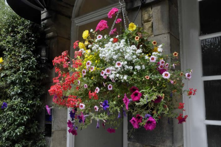 Arden House B&B Harrogate